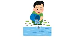 houryu_fish