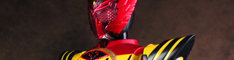 shf_super_tatoba_banner