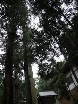 kabasaki3