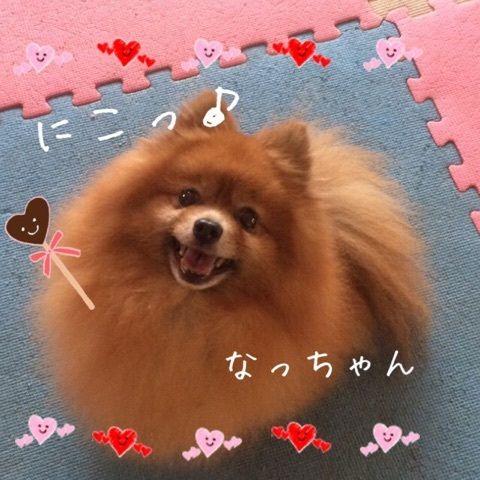 なっちゃん(o^―^o)ニコ