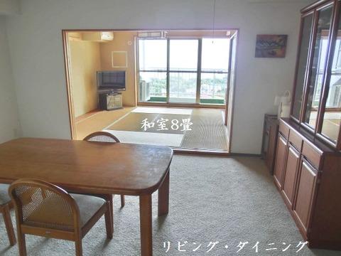 si-aiviraizuatagawa211301