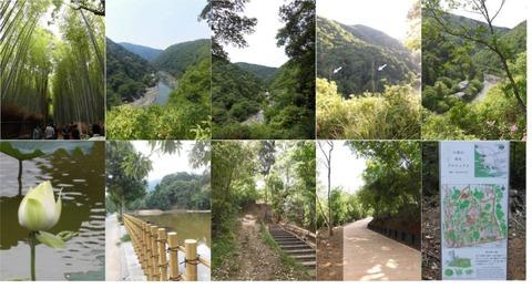 竹林展望台小倉池