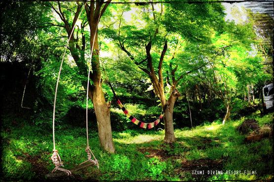 伊豆海ダイビングリゾート 庭 4