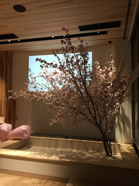 桜のある風景、再現します。