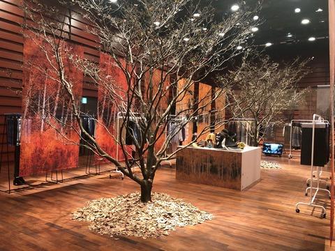 秋冬コレクション。枯れ木