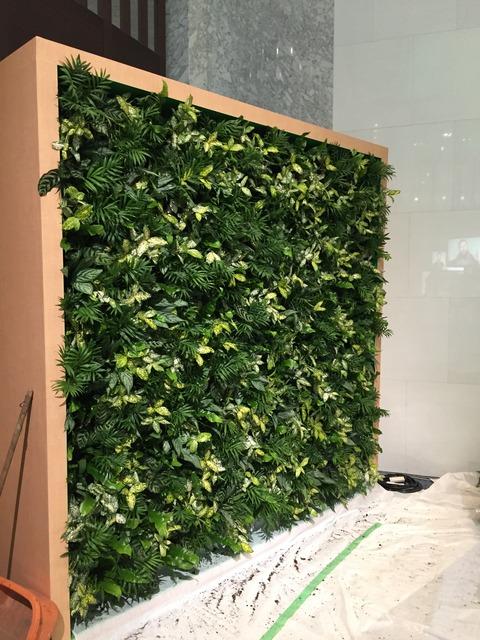 壁面緑化の仮設
