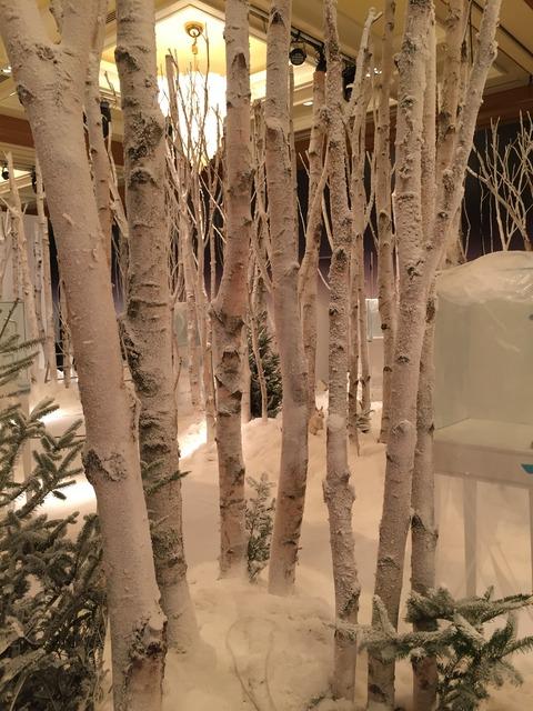 披露宴会場に白樺の森