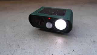 DSC01219