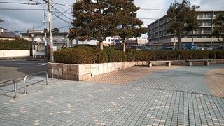 IMG_20190201_084259_6