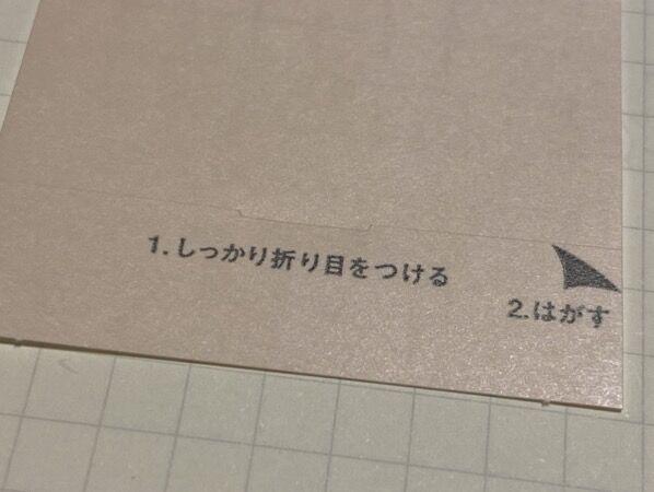 IMG 4750