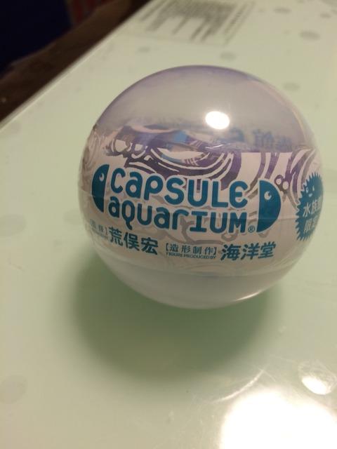 納得のクオリティ 海洋堂「カプセルアクアリウム6」