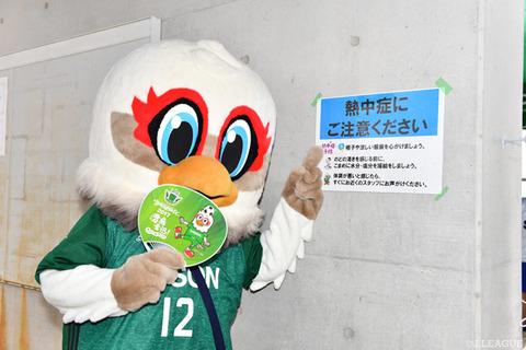 17709 matumoto2