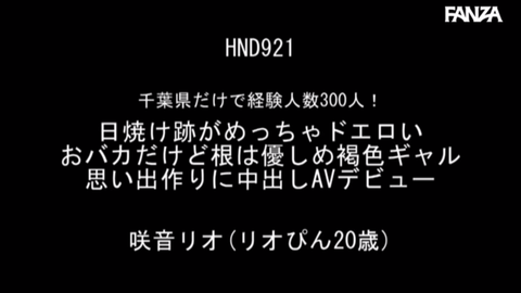 23t (3)