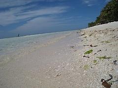 ボホール島ビーチ