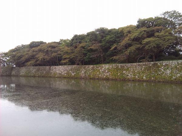 iinaosuke (4)