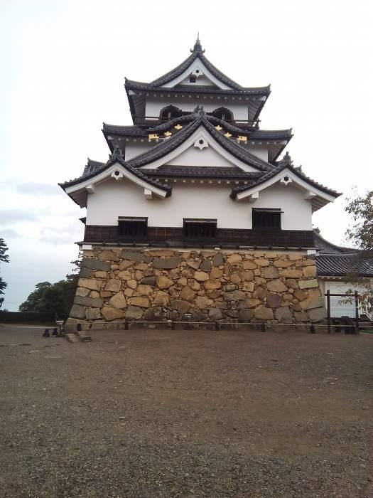 hikonejyo (6)