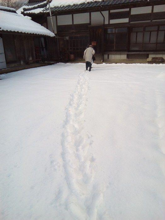 yukimeguro (1)