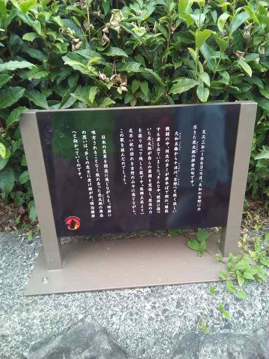 yosimurakota (7)