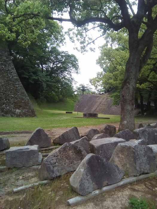 kumamotosiro (11)