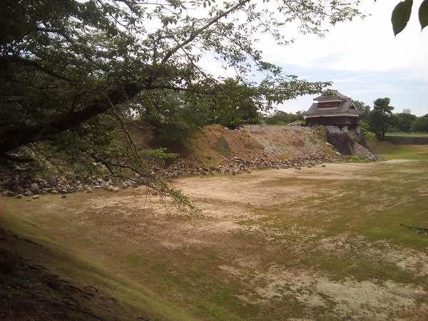 kumamotosiro (15)