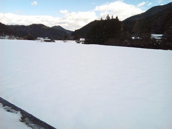 yukimeguro (5)