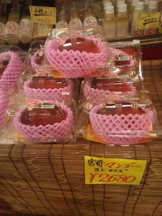 takachihotetu (2)