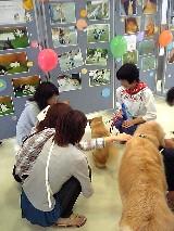 岡山県動物愛護センター動物愛護フェス