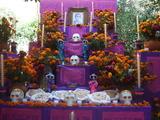 2010_1104MEXICO0138