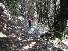 サビーナ地方のハイキングコース