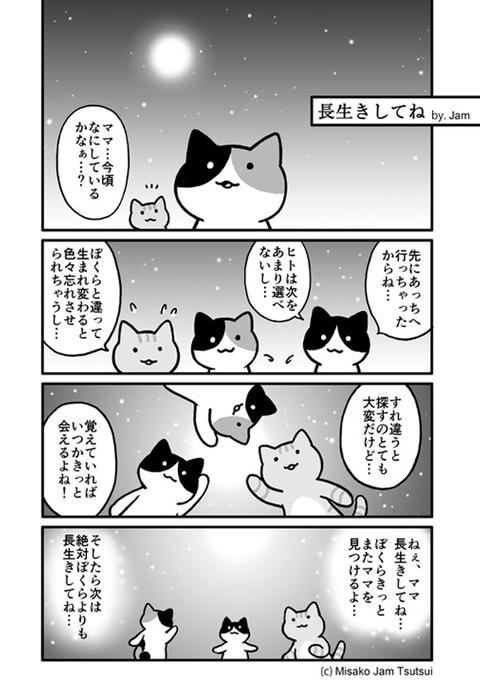 iyasitai_05