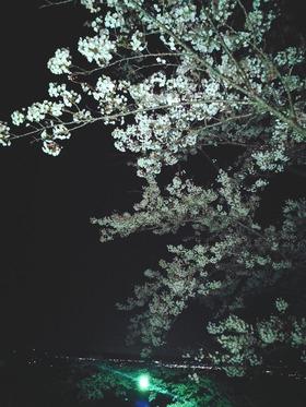 21-04-12-12-09-58-767_deco