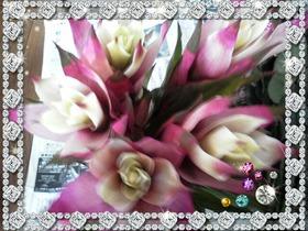 2013-02-28-03-19-06_deco