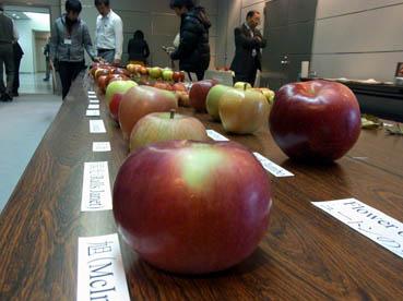 りんご新品種