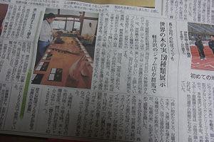 信濃毎日新聞木の実展