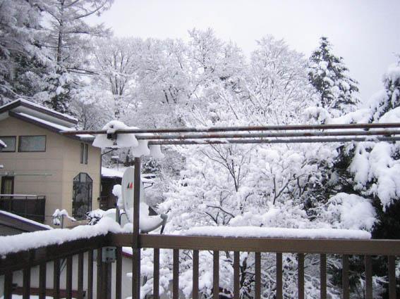 軽井沢 雪