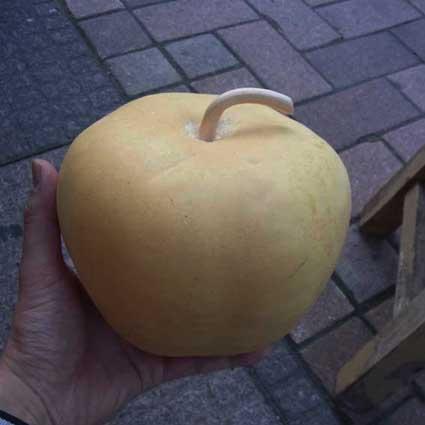 ひょうたんりんご