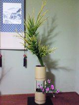 2006.12.14せっかん杉
