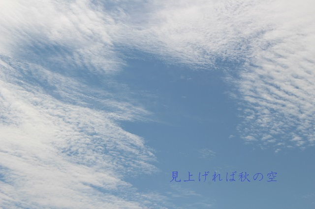 IMG_8707re640