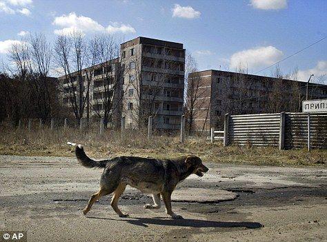 fukushima-vs-chernobyl-2