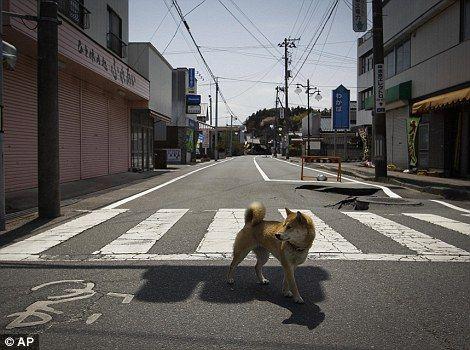 fukushima-vs-chernobyl-1