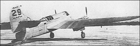 ant-29_1