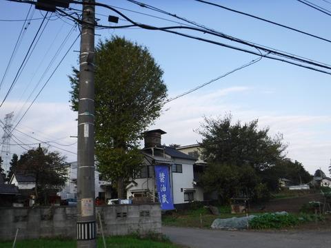 181111_田波目城跡_006