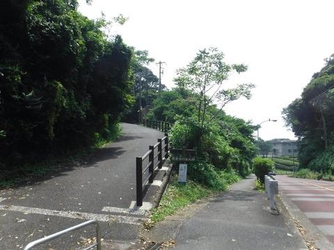 190728_三浦半島_077
