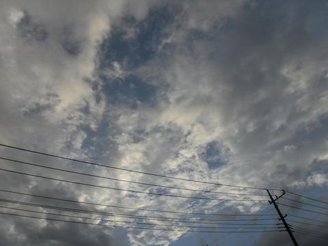 200919_上里-small_045