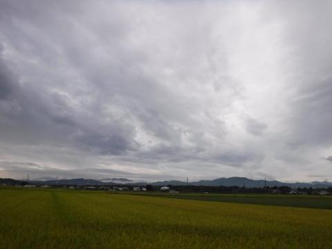 200919_上里-small_075