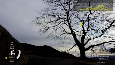 190106_八徳の一本桜.mp4_009144335