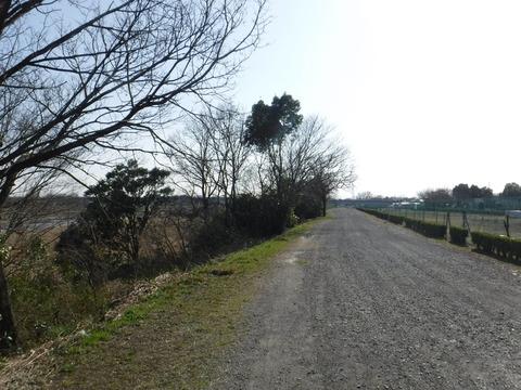 200224_入間川CR_004