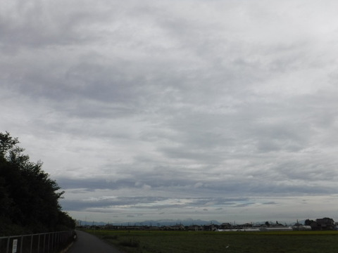 200919_上里-small_086
