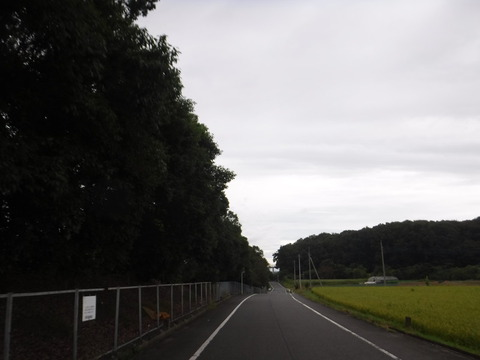 200919_上里-small_081