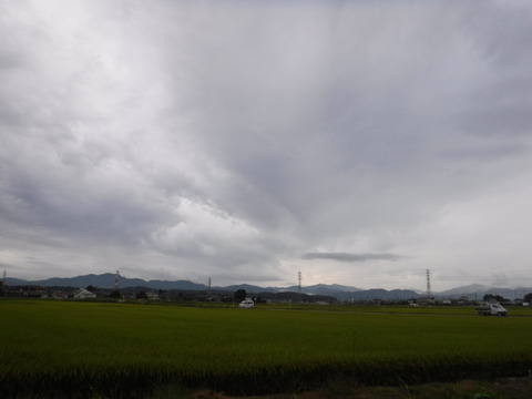 200919_上里-small_083